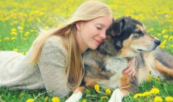 Warum ich jetzt einen imaginären Hund habe und was das mit dem Universum zu tun hat